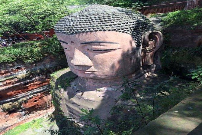 One Day Trip to Chengdu Panda Base and Leshan Buddha Tour
