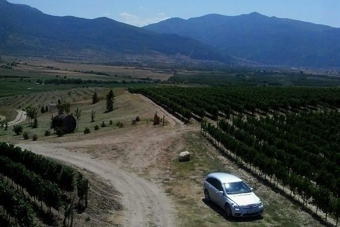 Bulgarian wines in 4 days: The gift of Dionysus
