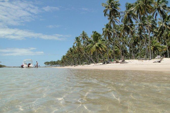 Viagem de dia inteiro do Recife à Praia dos Carneiros