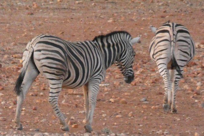 - Swakopmund, NAMIBIA