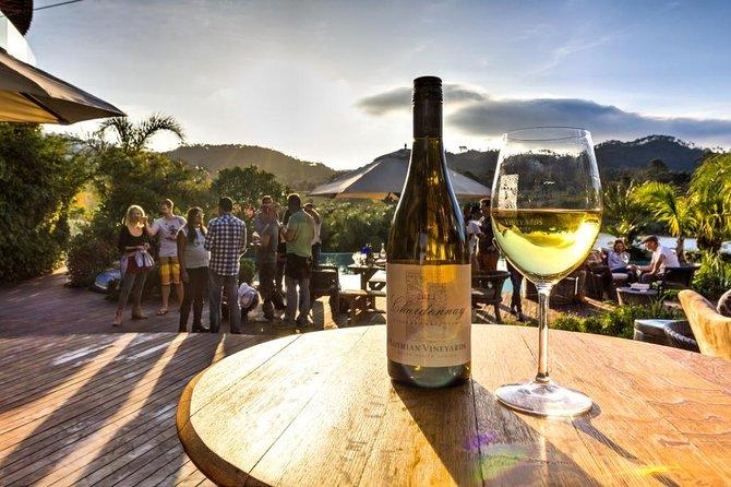 Cool Climate Vineyard Tour