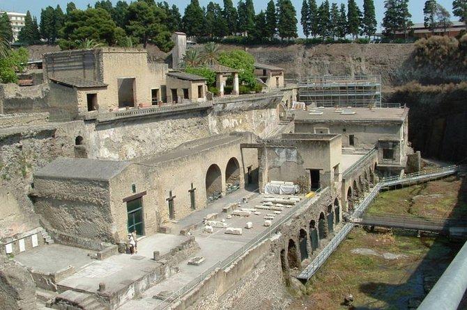 Pompei Ercolano Mt Vesuvio and winery tour