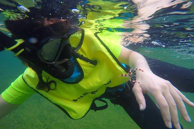 Snorkeling Lesson & Interactive Experience for kids and adults