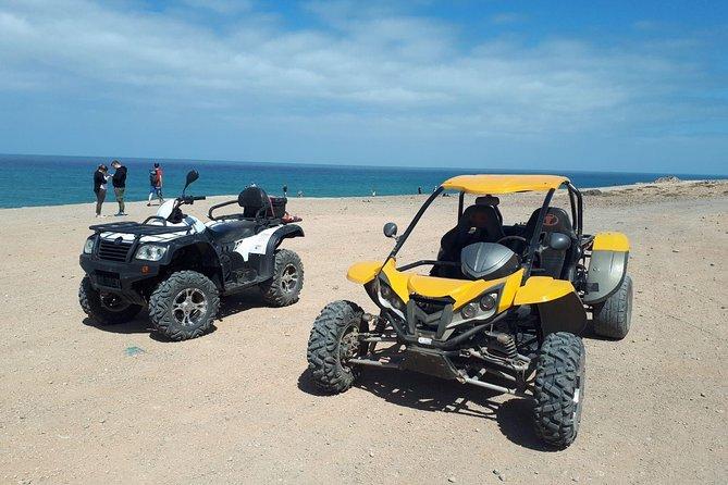quad buggy 500