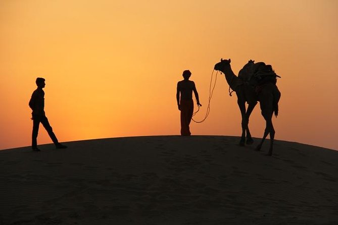 An Non Touristic Half Day Camel Safari photo 9