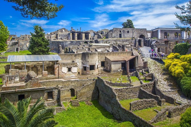 Day Trip to the Ruins of Pompeii