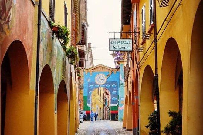 Tour de vino y aceite de oliva desde Bolonia