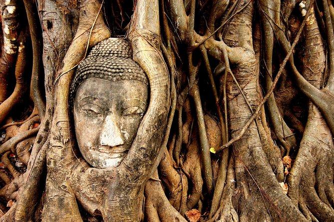 Face of Buddha - Ayutthaya