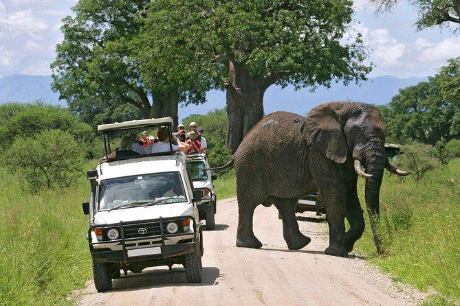 9-Days Best of Kenya Wildlife Pop Up 4X4 Jeep Safari