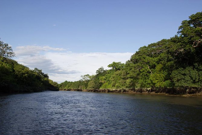 Palo Verde National Park and Tempisque River from Guanacaste