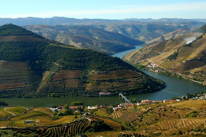 Douro Tasting (full Day Private Tour, All Included)