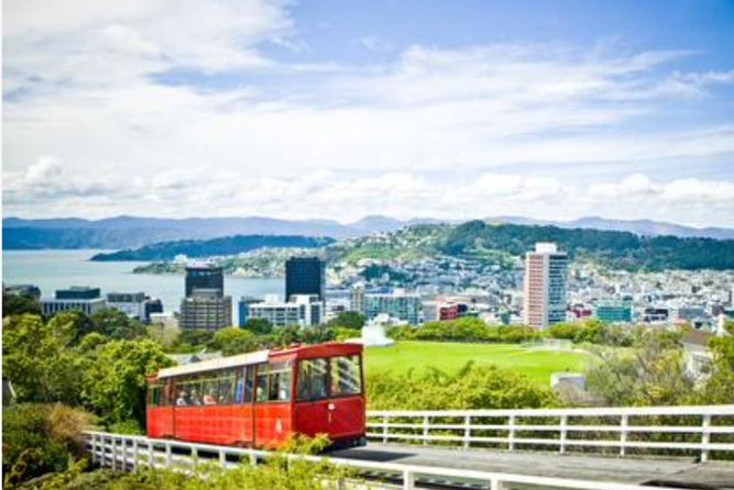 Wellington luxury custom sceneic tours