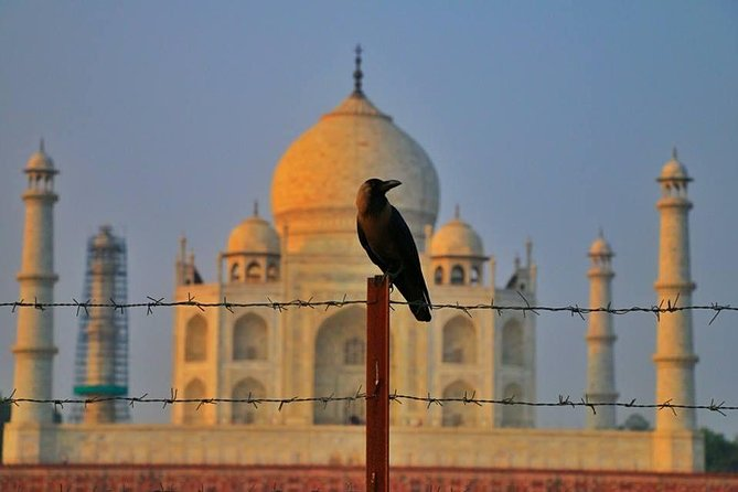 Private Agra Day Tour