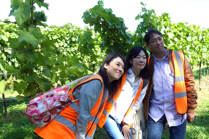Private English Wine Tour from Kent