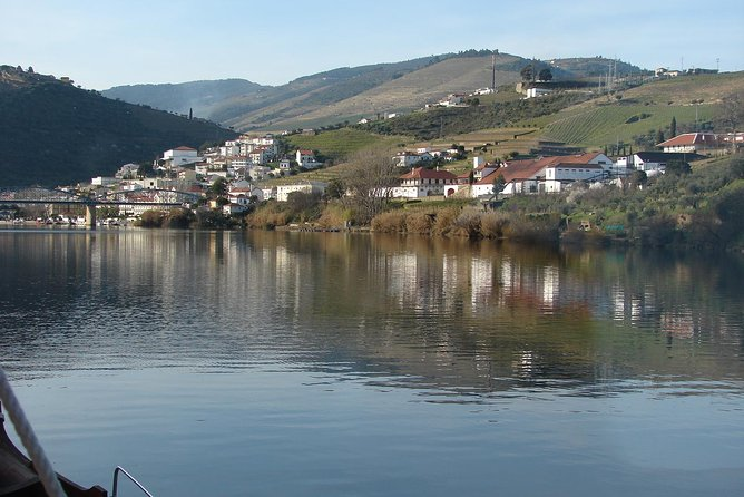 Douro Valley private wine tour - Awesome day trip including tastings and lunch
