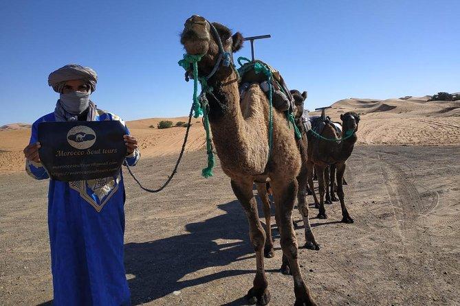 Ouarzazate - Desert - Fes 5 days 4 nights