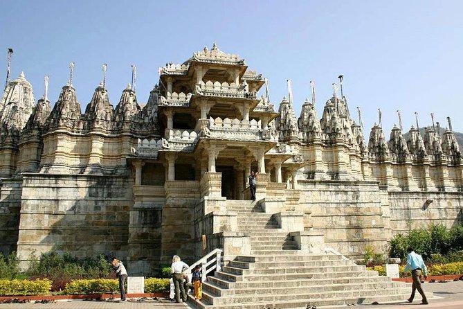 Ranakpur Jain Temple & Jungle Safari From Udaipur and Drop Jodhpur