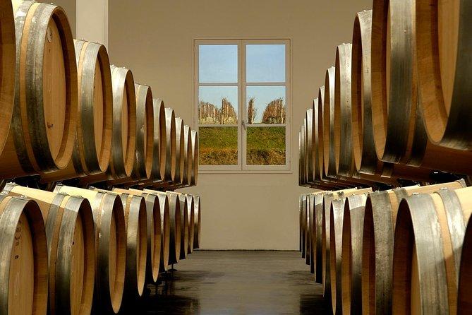 Excursão privada de vinho de dia inteiro saindo de Bordeaux