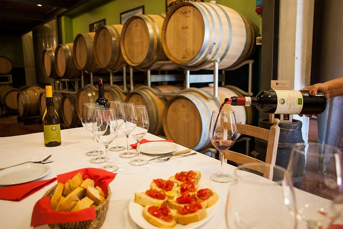 Winery tour and wine tasting of organic Chianti wines and extra virgin oil