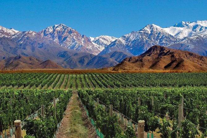 4-Days Trip to Mendoza and The Andes