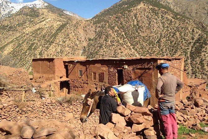 Day trip from marrakech to 4 valleys, Berber villages and atlas mountains