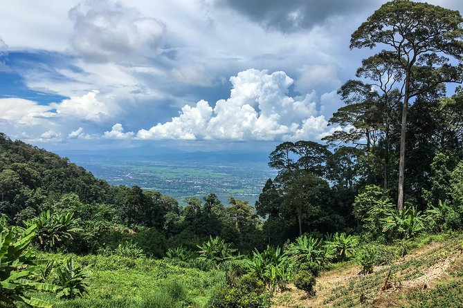 6-Hour Hike and Bike in Doi Suthep Pui National Park Combo from Chiang Mai photo 8