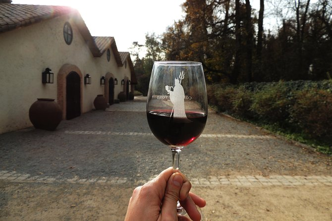 Small-Group Half day Tour to Concha y Toro Winery