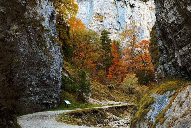 CURMATURA CHALET and CANYON eBike tour(BRASOV)