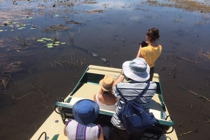 Private 1-Hour Airboat Tour of Miami Everglades