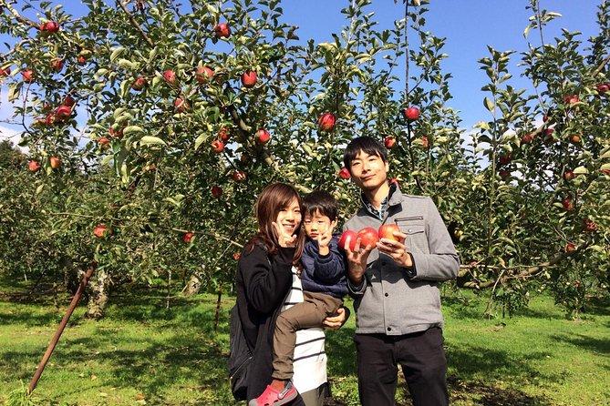 Hiroshima Apple picking