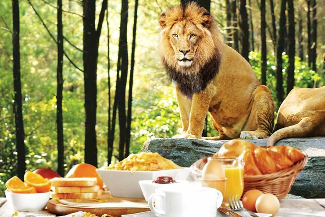 Bali Breakfast with the Lions