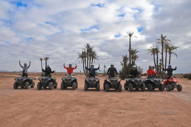 Half-Day Palm grove desert Quad & Camel Tour