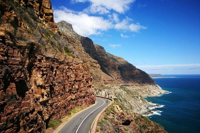 Full-Day Best of the Cape, Peninsula, Cape Point and Stellenbosch Tour