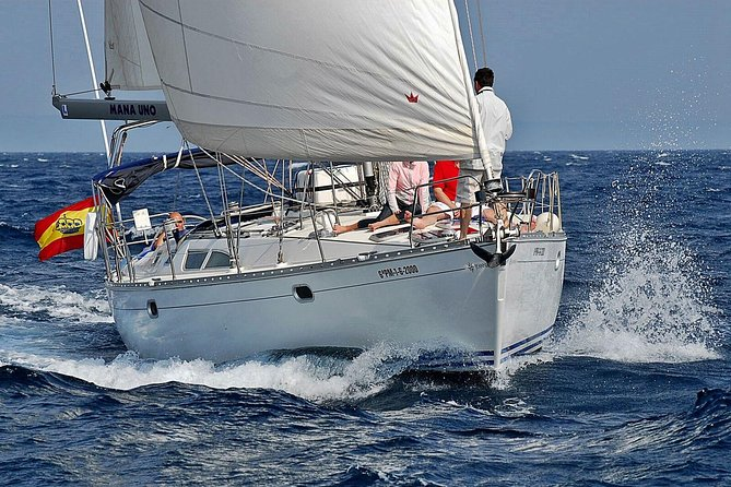 Half-day Private Sailing Experience in Playa de Palma photo 1