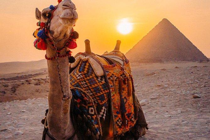 Cairo tour/ Day tour to Giza Pyramids,Egyptian Museum,Islamic or Coptic Cairo
