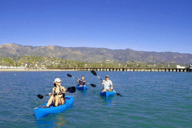 Kayak Tour of Santa Barbara with Experienced Guide