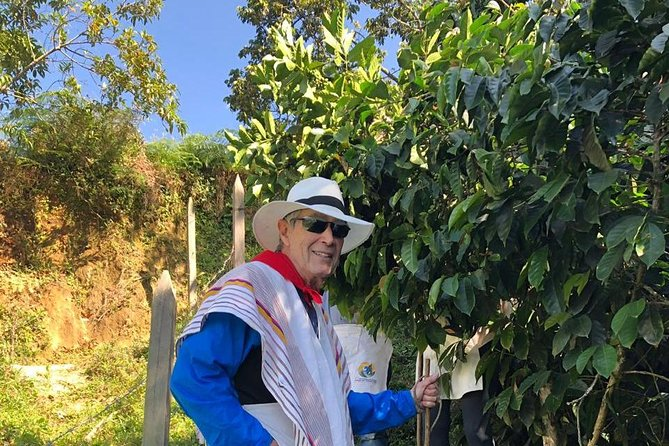 Jardin Day Trip: Colombian Coffee Tour from Medellin