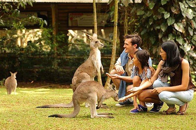 Private Bogor Safari Park Tour from Jakarta: All Inclusive