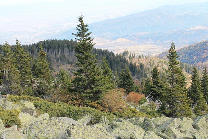 Vitosha Mountain- Heritage and Hiking- Private Day Trip