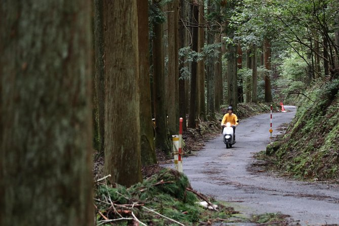 Kyoto country side scooter tour