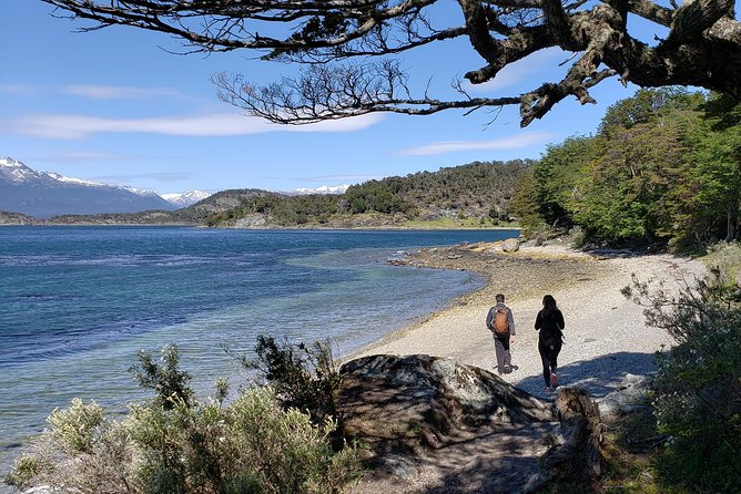 Tierra del Fuego National Park Private Hiking Tour