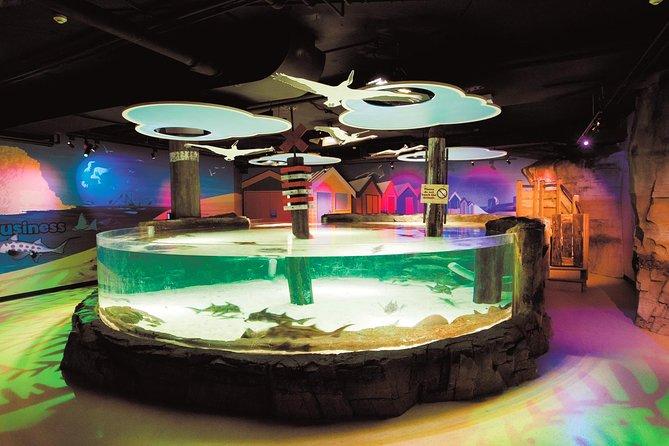 https://media.tacdn.com/media/attractions-splice-spp-674x446/07/29/a7/0f.jpg