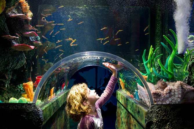 TOURIST DISCOUNT Tickets for SEALIFE (Siam Paragon)