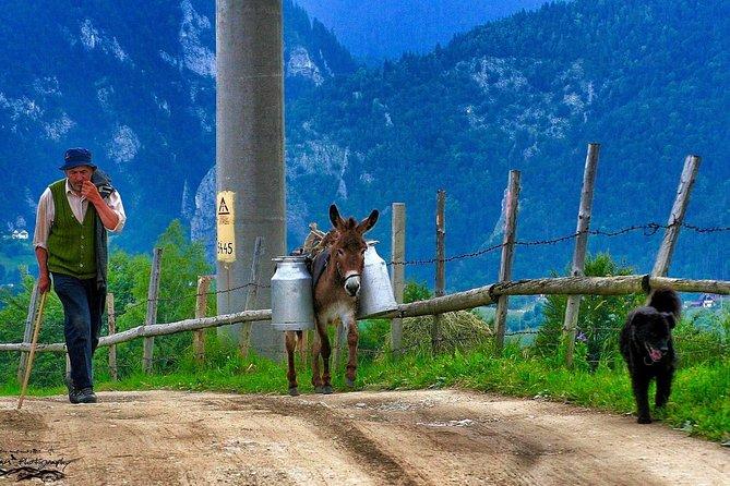 4x4 tour in the Carpathian Mountains, Transylvania and Dracula's Castle