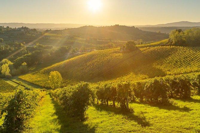 Tuscany by Electric Bike