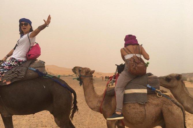 2- Day Zagora Desert Camel Trek