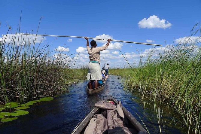 8 Days Okavango Delta & Victoria Falls Serviced Camping