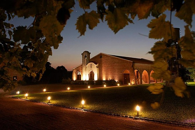 Guided tour and wine tasting at Bouza wineries
