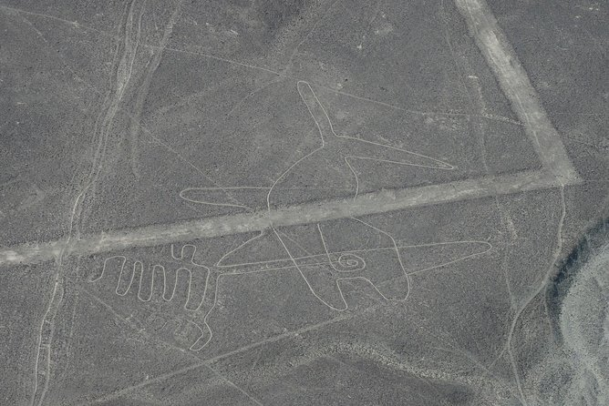 Nazca Lines flight And Chauchilla cemetery tour combo