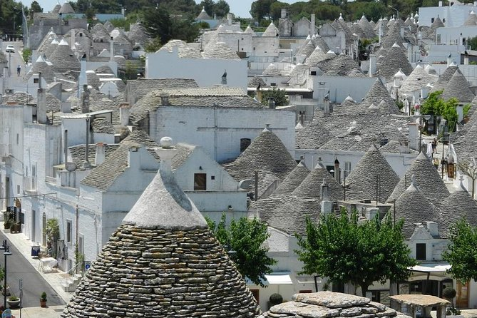 Alberobello and Castel del Monte Private Day Tour from Rome
